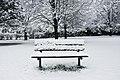 Cold bench.jpg
