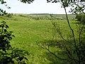 Coolarkan Townland - geograph.org.uk - 810456.jpg