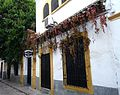 Cordoba street 01 (4426550639).jpg