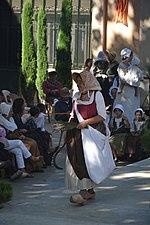 Costumes comtadines
