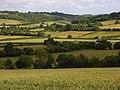 Countryside, Radnage - geograph.org.uk - 883920.jpg