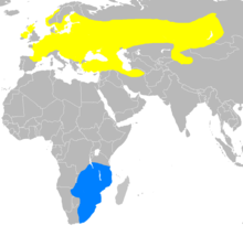 Map shawin the breedin regions o Crex crex (maist o Europe an Sooth-Siberian Roushie up tae Mongolie), an thair Winter migration region (Sooth-Wast Africae).