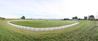 Saxton Oval Cricket Stadium