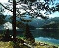 Crno jezero (Durmitor).jpg