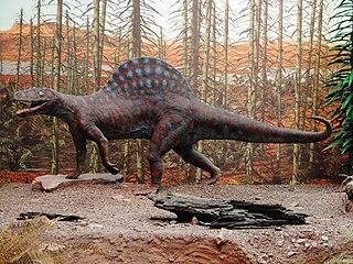 <i>Arizonasaurus</i> genus of reptiles