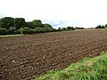 Cultivated field - geograph.org.uk - 989111.jpg
