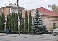 DSC 0335 вул. Пилипчука, 65.jpg