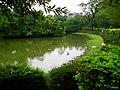 Daan Forest Park 大安森林公園 - panoramio (4).jpg