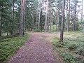 Degučių sen., Lithuania - panoramio (210).jpg