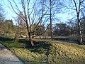 Delft - 2013 - panoramio (461).jpg
