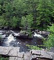 Dells of the Eau Claire River County Park, WI, June 2007.jpg