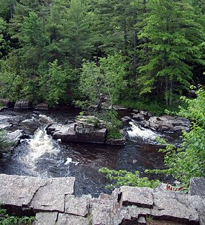 National Register of Historic Places listings in Marathon County, Wisconsin - Image: Dells of the Eau Claire River County Park, WI, June 2007