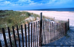 Coastal Zone Management Act - Delaware Seashore State Park.
