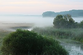 Desna river Vinn meadow 2016 G3.jpg