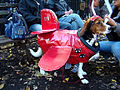 Dog dressed in an airplane outfit.jpg