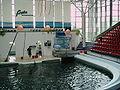 Dolphinarium Varna.jpg