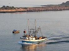 bateau de peche wiki