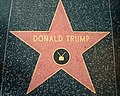 Donald Trump star Hollywood Walk of Fame.JPG