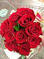 Dozen Red Roses.jpeg