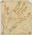 Drawing, Study- A left hand, 1650–1700 (CH 18118675).jpg