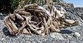 Driftwood at Iron Mine Bay Beach, East Sooke Regional Park, British Columbia, Canada 17.jpg