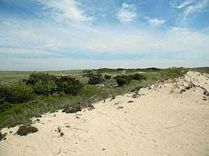 Amagansett National Wildlife Refuge - Dunes at Amagansett National Wildlife Refuge
