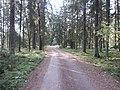 Dusetų sen., Lithuania - panoramio (112).jpg