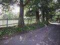 Dyne's hall park boundary - geograph.org.uk - 261186.jpg