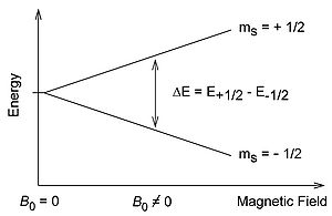Splitting of electron spin states