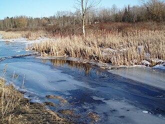 Oak Ridges, Ontario - The East Humber River