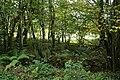 East Anstey, by Yanhey Moor - geograph.org.uk - 245346.jpg