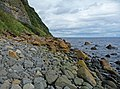 East Trotternish shoreline - geograph.org.uk - 947590.jpg