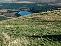 Edge of Holme Moss - geograph.org.uk - 827912.jpg