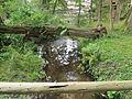 Egestorf-Sudermühlen Schmale-Aue Aug-2014 IMG 3827.JPG