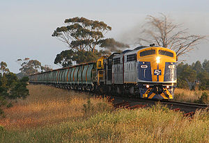 El Zorro (railway) - CFCLA's S311 leads a mix of hired and El Zorro locomotives on a broad gauge grain service near Meredith in January 2008