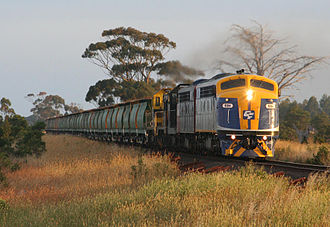 CFCL Australia - S311 leading CFCLA grain hoppers on an El Zorro operated train near Meredith in January 2008