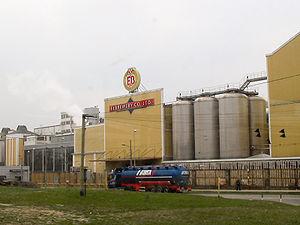 Elbrewery - Elbrewery Company in Elblag