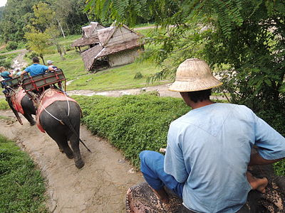 Elephant riding on Phuket (november, 2013) by shakko.JPG
