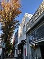 Elm Street, Southside, Greensboro, NC (48988088096).jpg