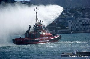 Emergency on the Waterfront Day - Flickr - 111 Emergency (12).jpg