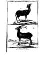 Encyclopedie volume 5-028.png