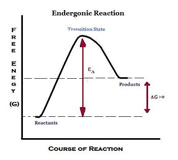 endergonic reaction