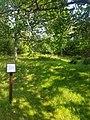 Engelska kyrkogården, Hallands väderö.jpg