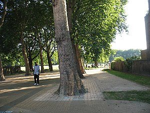 Deptford Park - Image: Entrance to Deptford Park geograph.org.uk 1449609