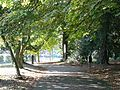 Evington Park (33507007865).jpg
