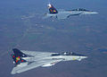 F-14B and FA-18F of VF-VFA-11 Top Starboard - 2005.jpg