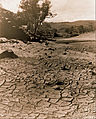 F. A. Joyner - The vanished pool, Flinders Ranges - Google Art Project.jpg