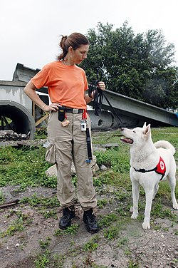 Search And Rescue Dog Training Schools California