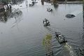 FEMA - 15520 - Photograph by Win Henderson taken on 09-05-2005 in Louisiana.jpg