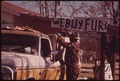 FUR BUYING AND SELLING IS BRISK DURING THE HUNTING SEASON IN LEAKEY, TEXAS, AND SAN ANTONIO - NARA - 554924.tif